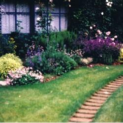 Angolo con piante perenni perenni giardino in Brianza