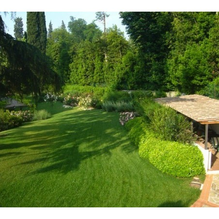 Giardino privato in campagna