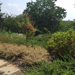 Rifacimento Giardino privato