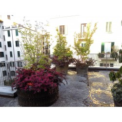 Terrazzo importante casa di moda Milanese