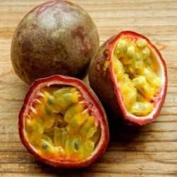 Passiflora edulis frutto della passione cm 90/100 pronta fruttificazione