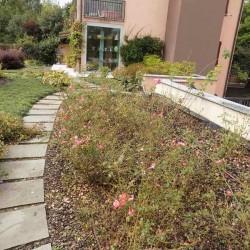 Costruzione giardino privato
